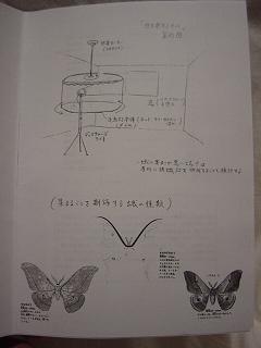 15蟲電気1.JPG